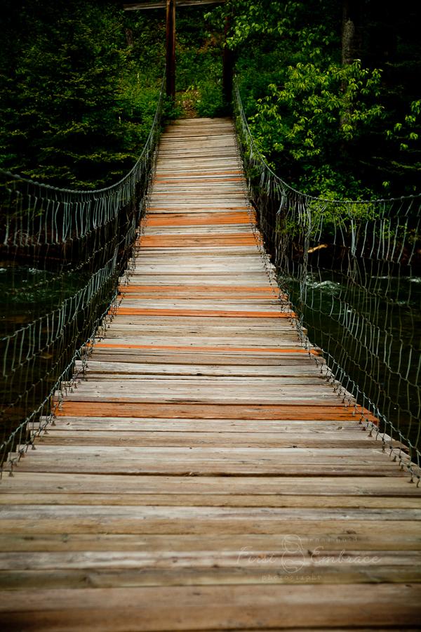 bridge-8560